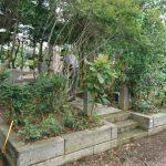 多磨霊園でお墓の定期清掃、彼岸前工事最終日